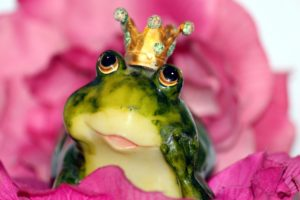 French Kissing Frogs: Dating after Divorce: Daniella English Canadian Blogger